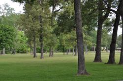 Magnolia Area Company Picnics,