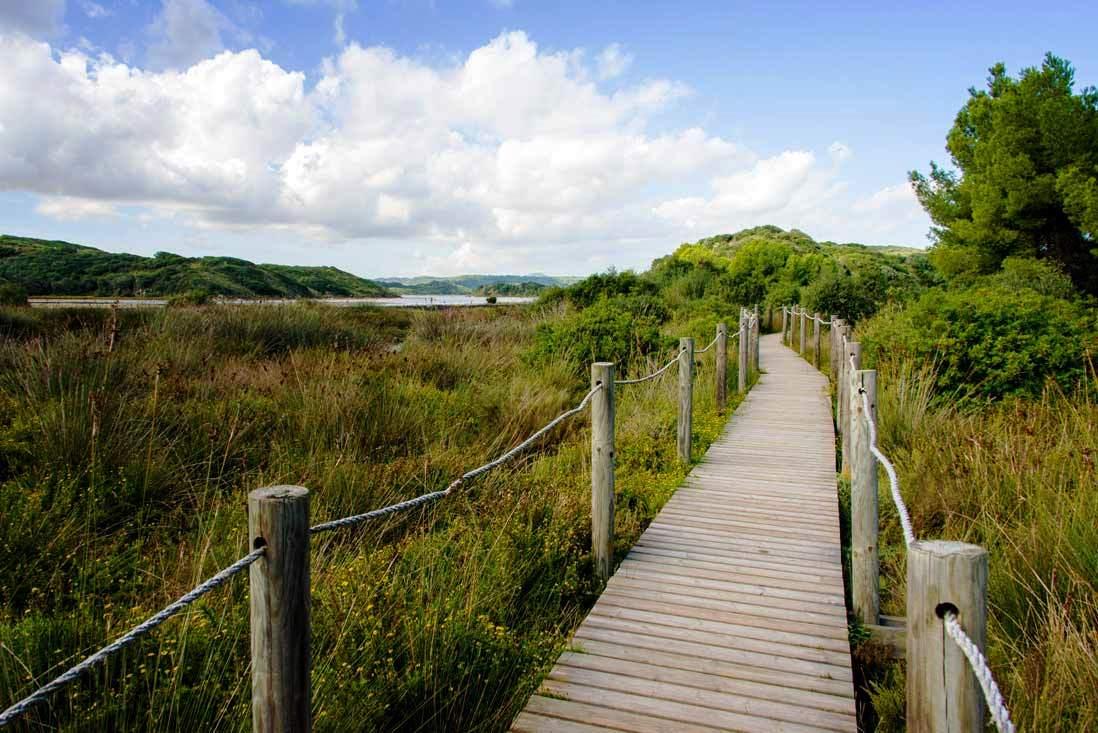Parc naturel de l'Albufera