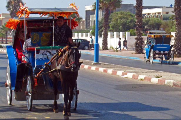 Balade en calèche à Essaouira