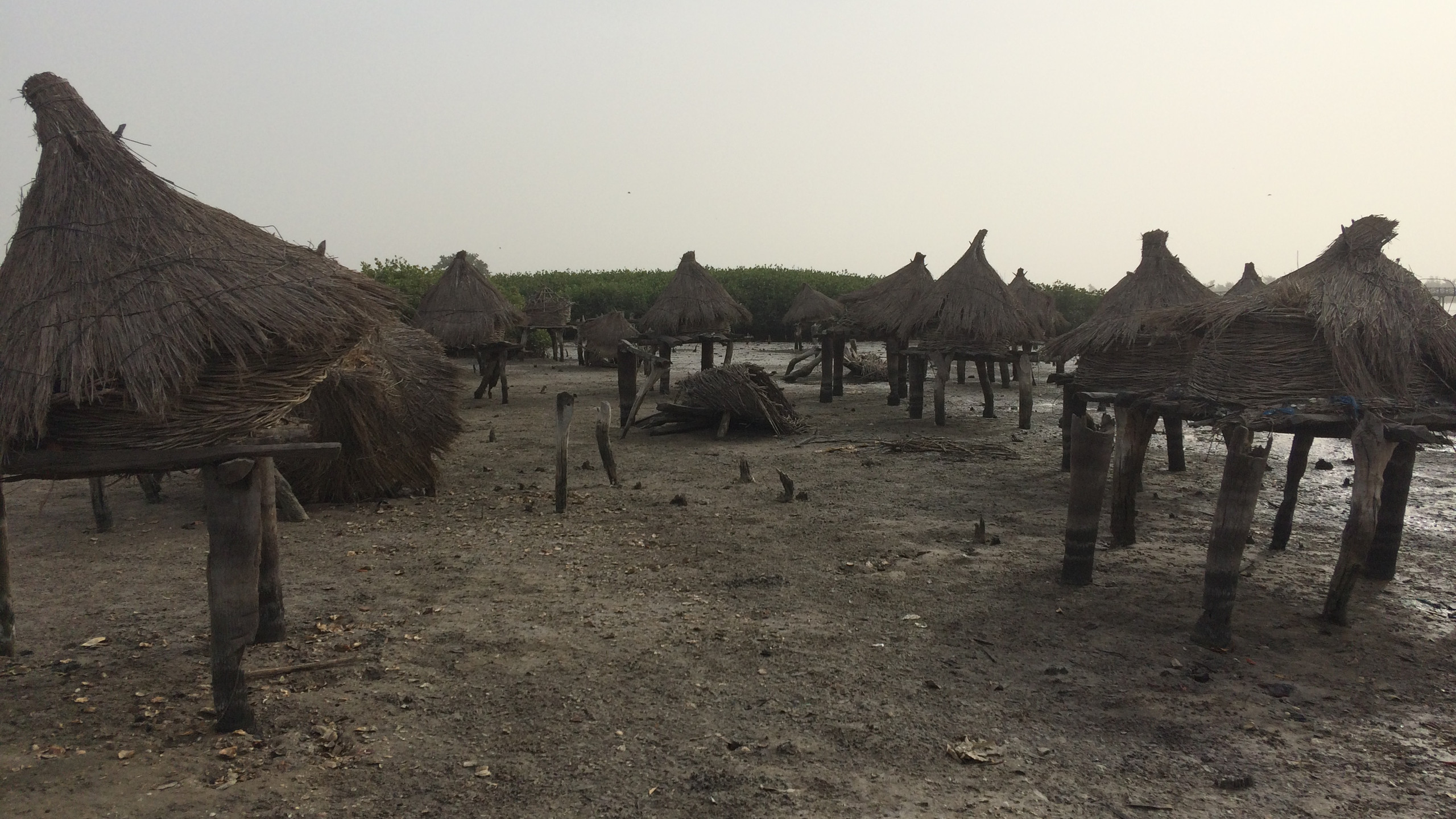 Séjour adapté au Sénégal, hiver 2017