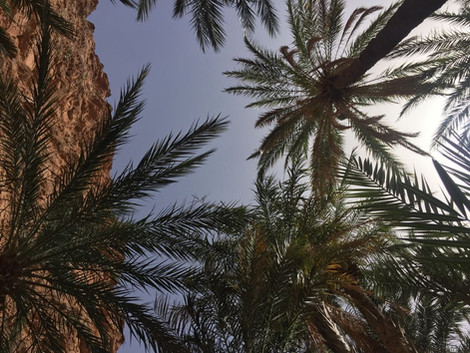 Maroc Août 2017 - album photos