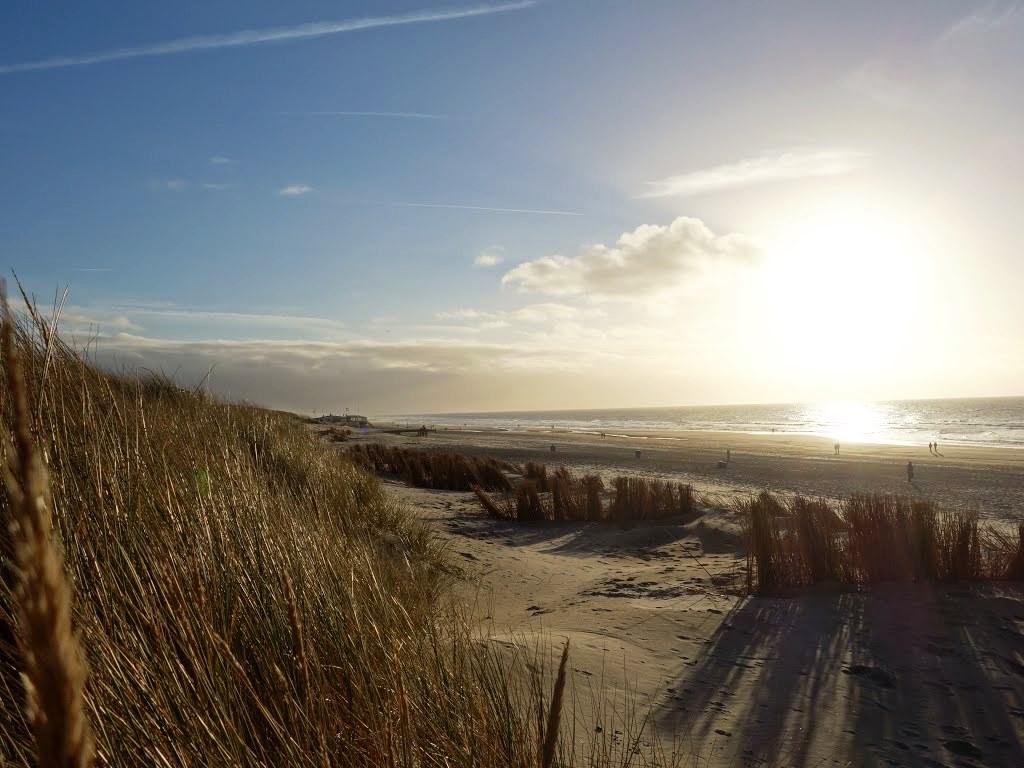 Les dunes de la Mer du Nord