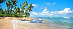 Praia do Forte | Imbassai