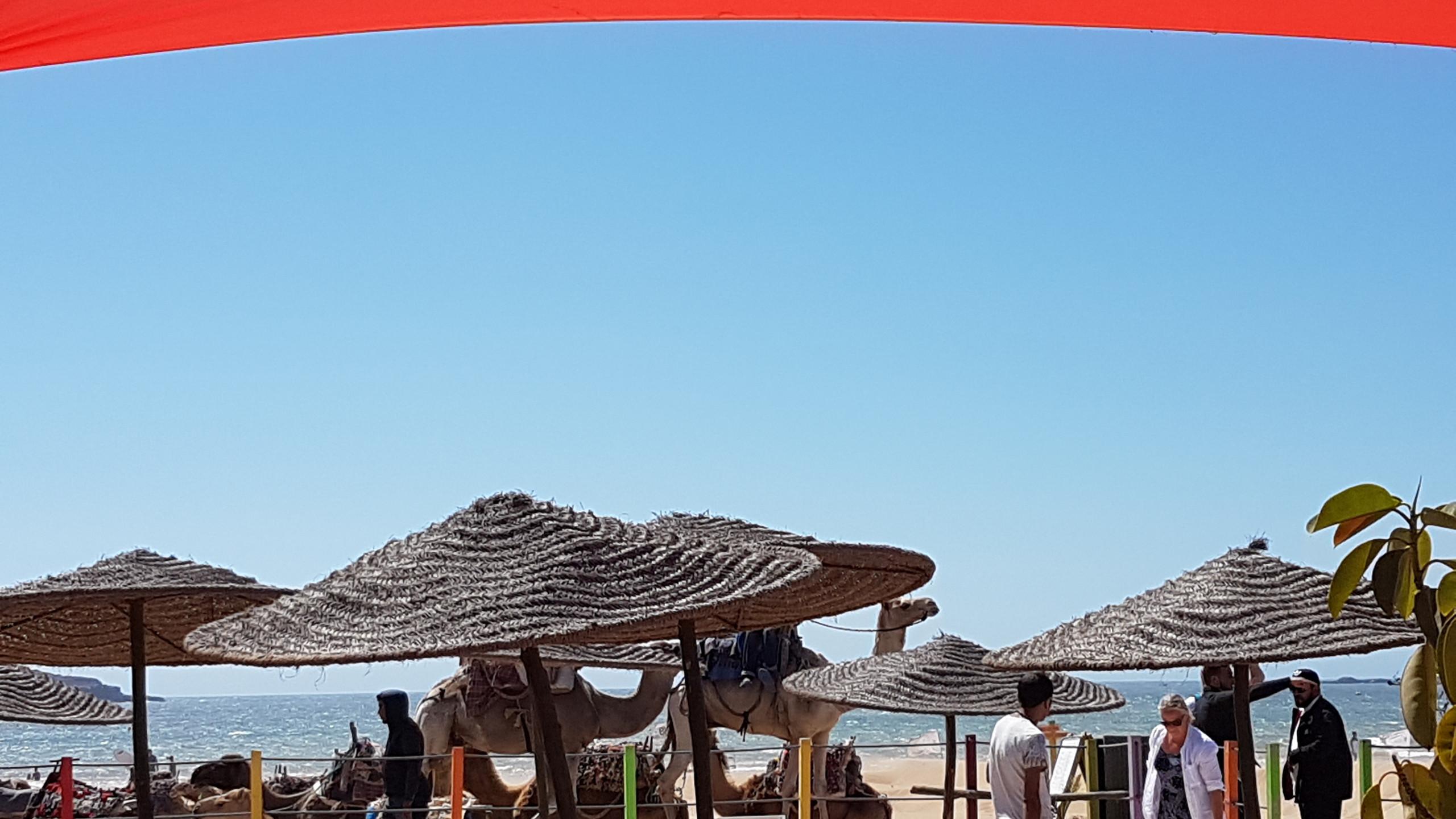 Séjour adapté Maroc juillet 2018 (5)
