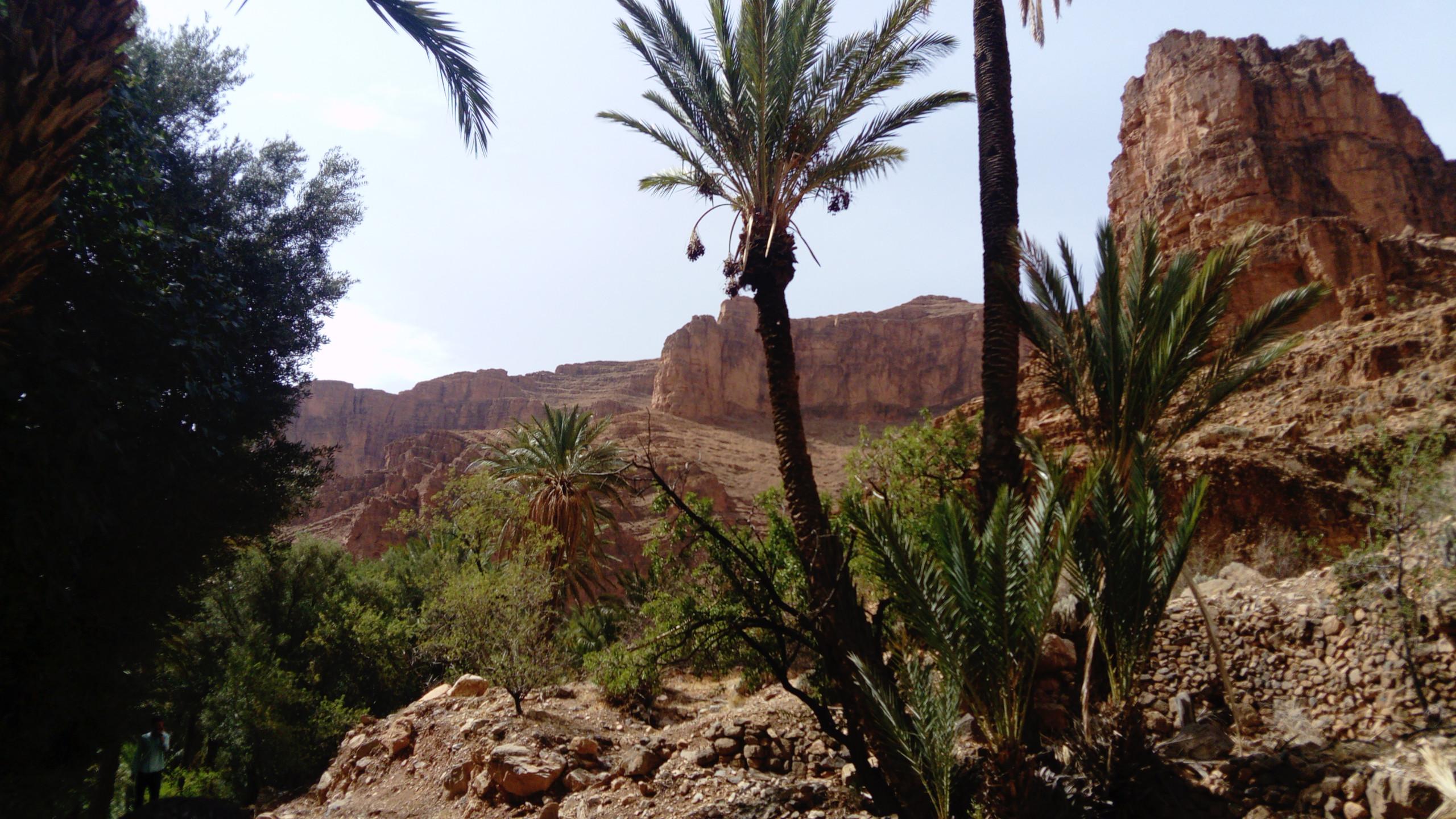 Séjour_adapté_Maroc_aout_2018_(34)