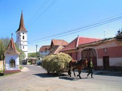 Village de Sibiel