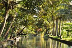 Backwaters | Kerala