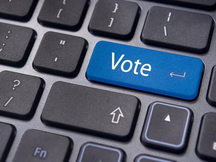 Internetové volby – příležitost, jak zajistit fungování demokracie i v době krize?