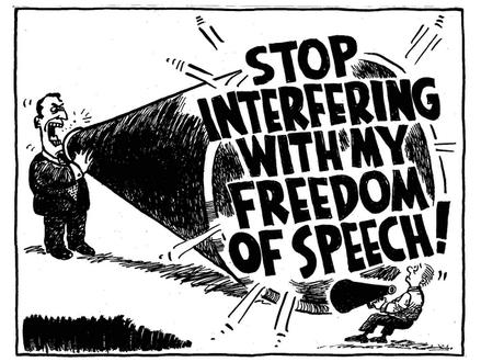 Je třeba rozšířit ústavní právo svobody slova i na internet?