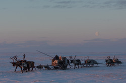 Péninsule du Yamal
