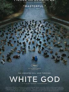 White God (Kornél Mundruczó, 2014)