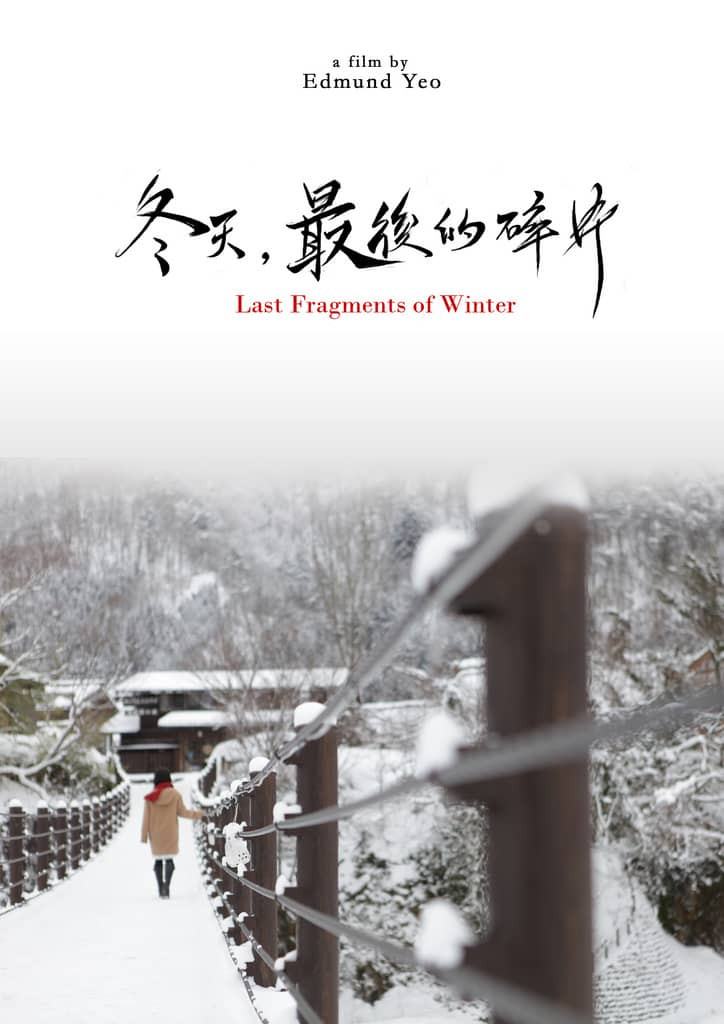 recenzie Last Fragments of Winter
