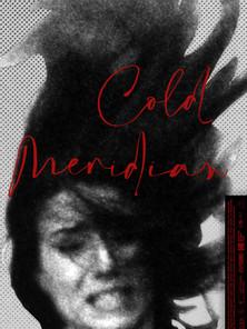 Cold Meridian (Peter Strickland, 2020)