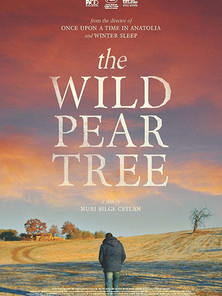 The Wild Pear Tree (Nuri Bilge Ceylan, 2018)