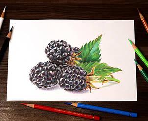 Dinamic-Blackberry.jpg