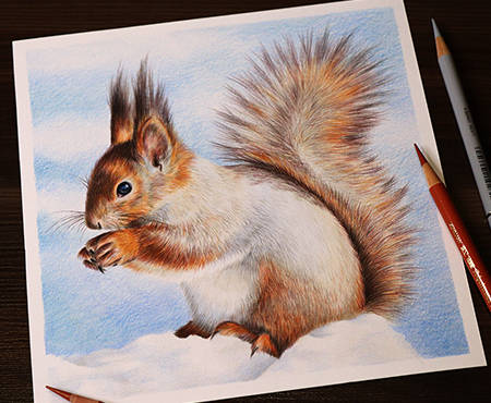 WinterSquirrel - dinamic.jpg