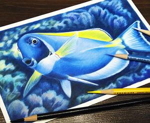 Dinamic-TropicalFish.jpg