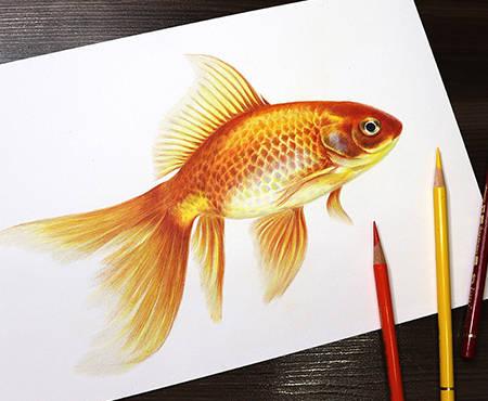 GoldenFish.jpg