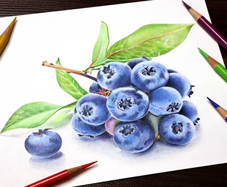 Dinamic-Blueberry.jpg