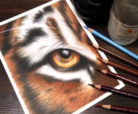 Dinamic-TigerEye.jpg