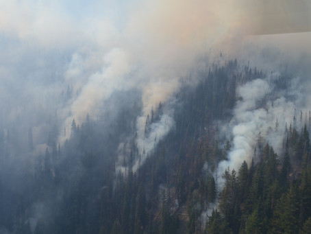 Over 300 Wildfires Burn in British Columbia