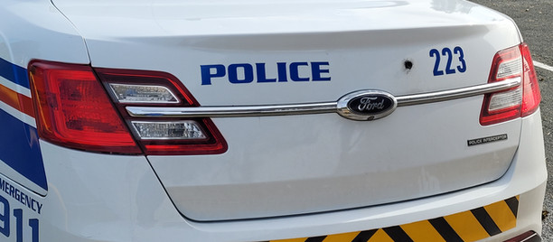 Woman arrested after serious assault on New Gower Street