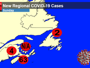 Nova Scotia sees highest number of new COVID-19 cases to date, NL adds two