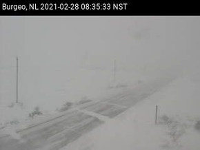 Stormy Day Across Newfoundland and Another Low on the Way #nlwx