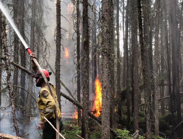 Water suppression is an important tactic in the fight to contain the Chuckegg wildfire.