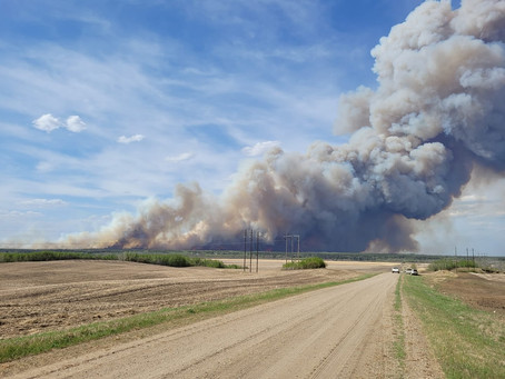 Evacuations ordered in Prince Albert due to wildfire