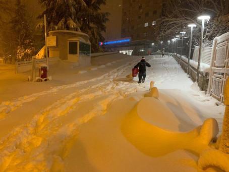 Crippling Blizzard Strikes Spain