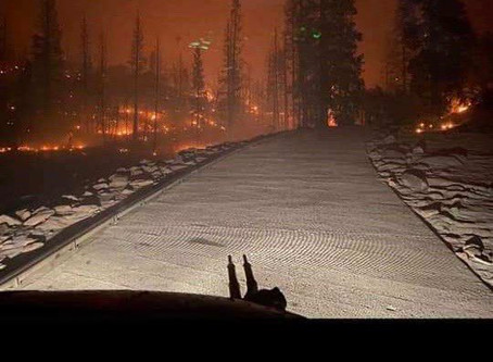 States of Emergency in California as Wildfires Ravage State