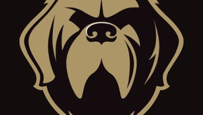 Newfoundland Growlers reach lease agreement with city