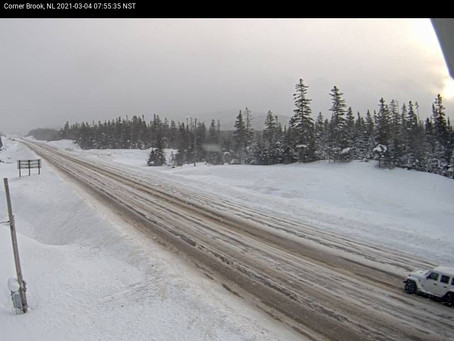 Blowing Snow Results in School Closures in Western Newfoundland #nlwx