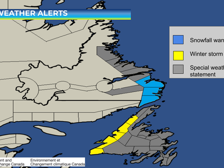 Mix of Winter Weather Expected Across NL