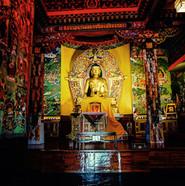 Norgulinka Tibetan Institute, Dharamshala