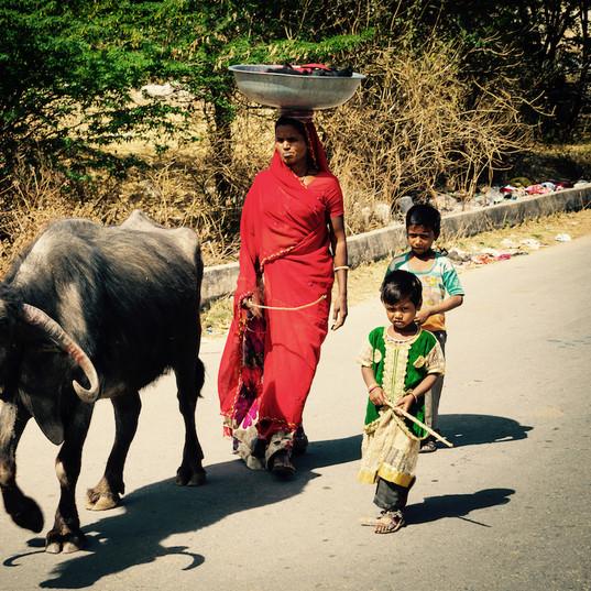 Indian scene in village near Udaipur