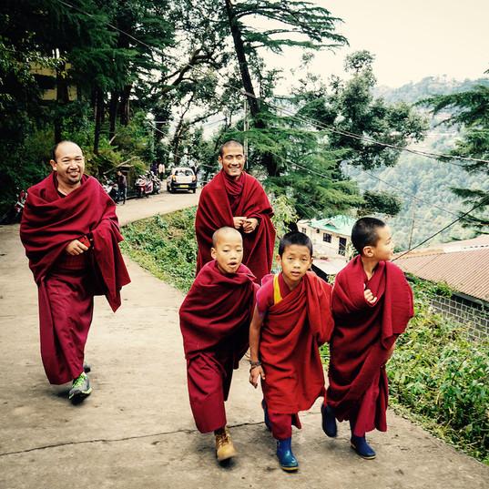 Buddhist monks, Dharamshala
