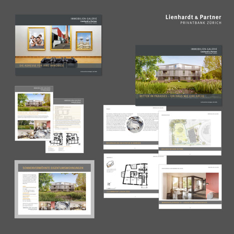 Lienhardt Privatbank, Immobilien Galerie