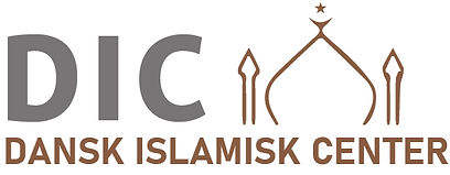 Logo DIC.jpg