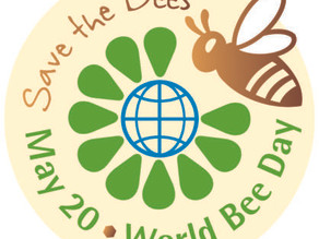It's World Bee Day Today!