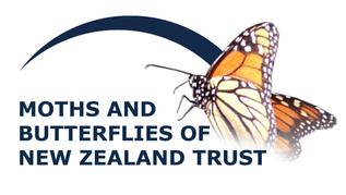Moths and Butterflies of New Zealand