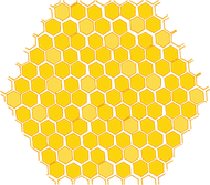 Full Honeycomb Transparent.png