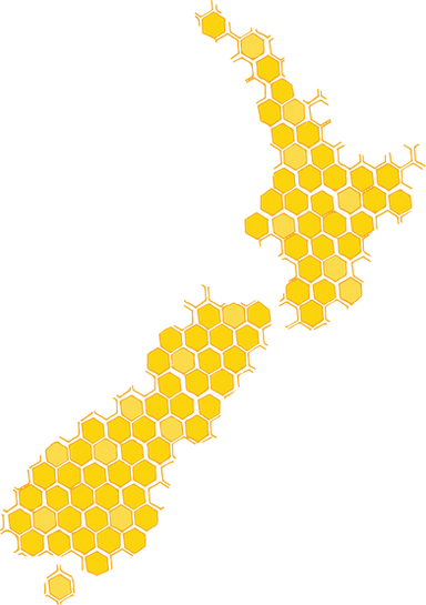 NZ Transparent.png