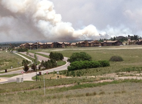 Black Forest Fire - Part of the our Community