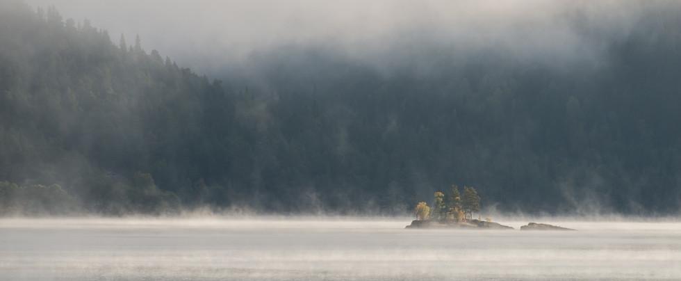 Tåke over innsjøen