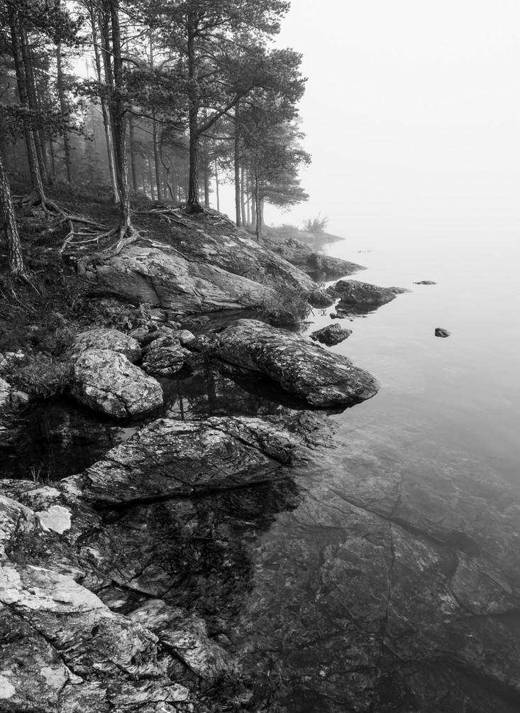 Tåke Ånøya