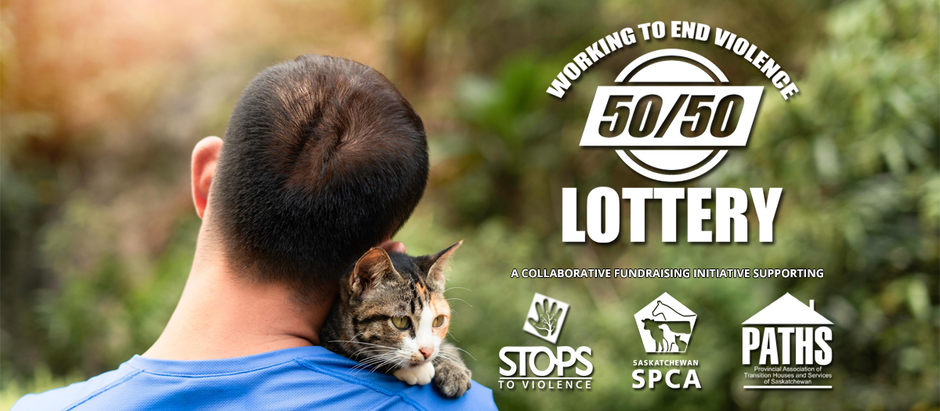Lottery launched to make pet-friendly emergency shelters a reality