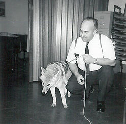 sspca-man-with-coyote.jpg