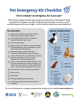 pet-emergency-checklist-img.png